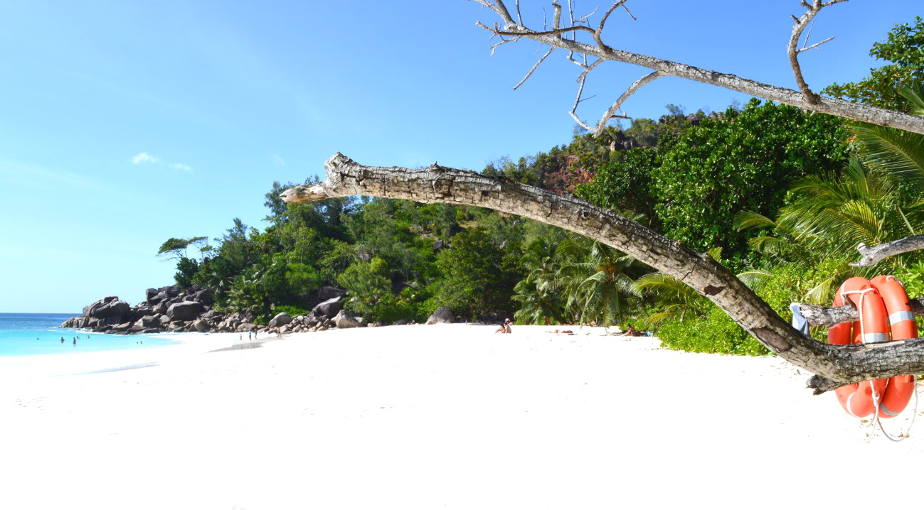 Snorkeling spot in the Seychelles