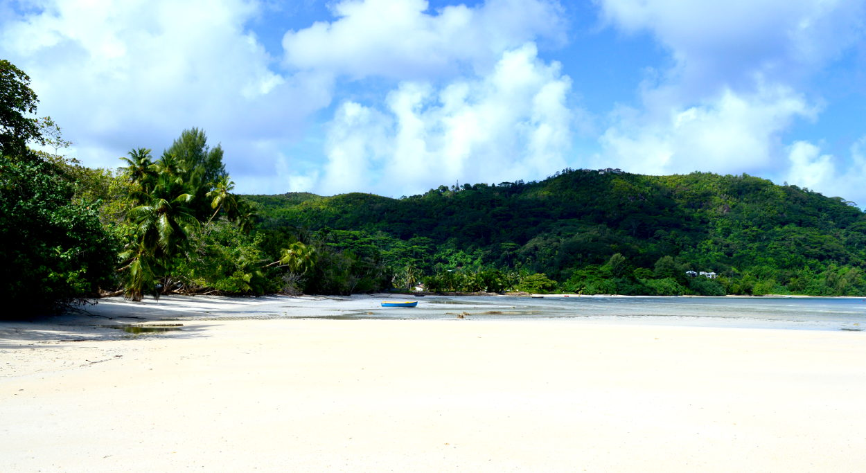 Beach on Anse la Mouche