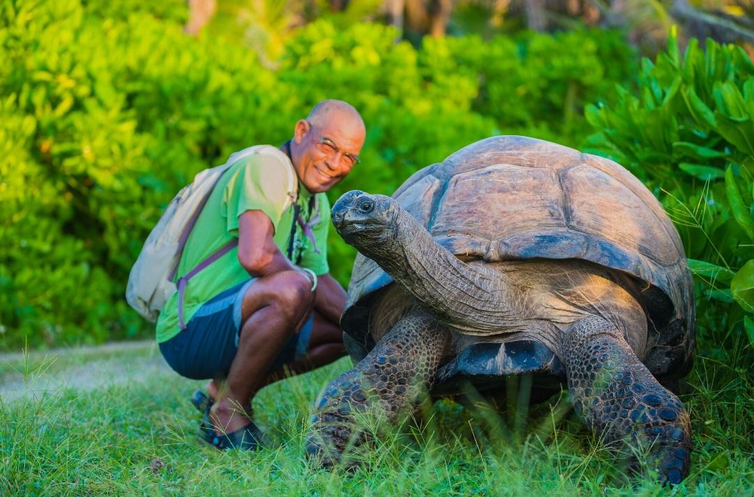 The world's biggest tortoise