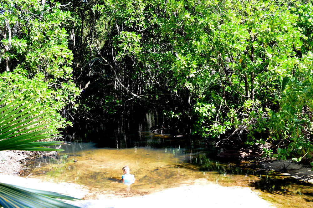 Pond near Anse Georgette
