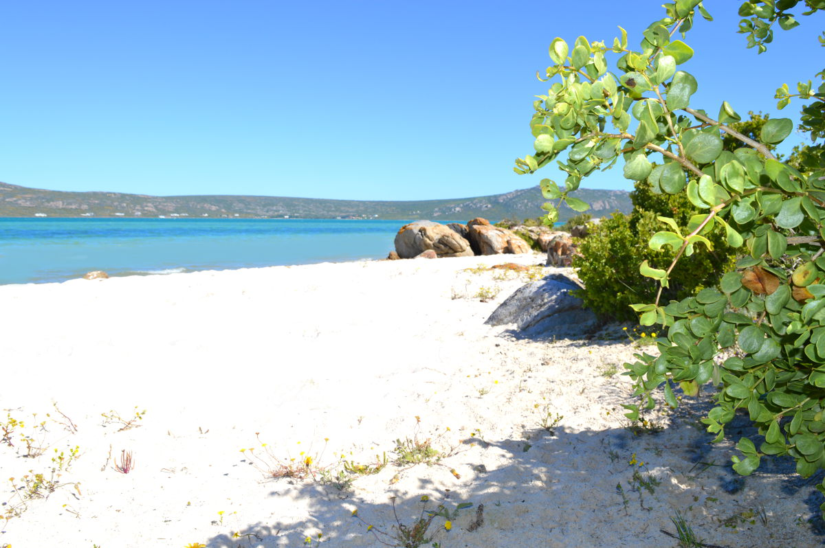 Shark Bay Beach