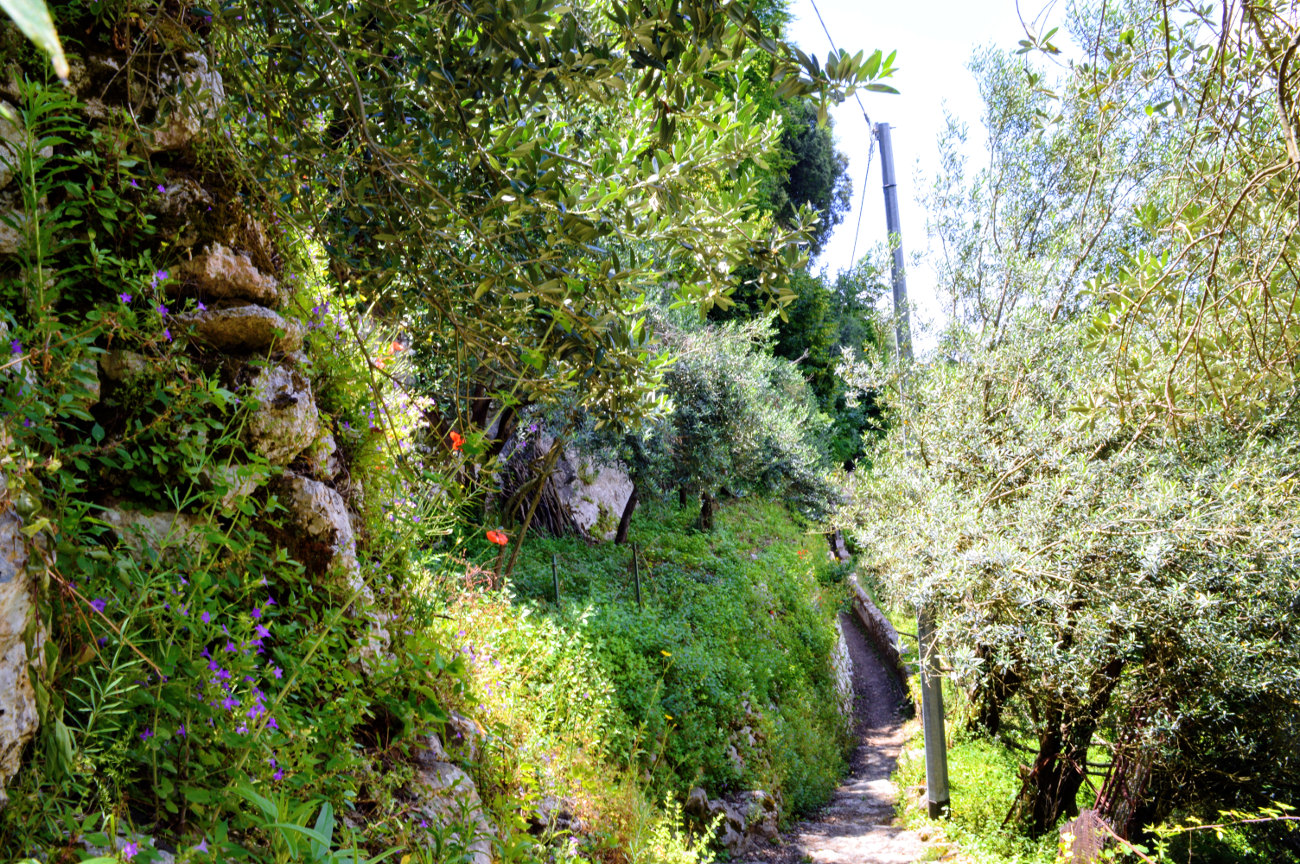 The start of the path to Minori from Ravello
