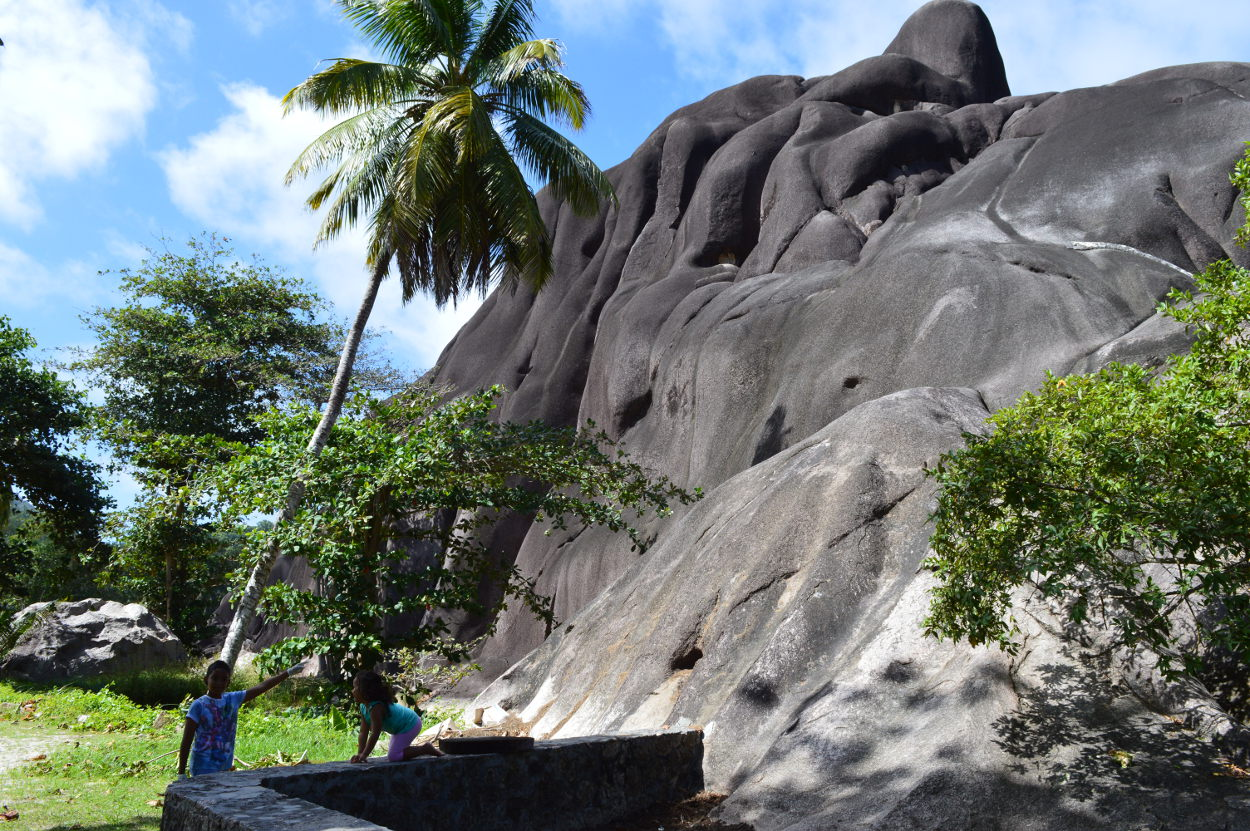 Giant rock and giant tortoise enclosure