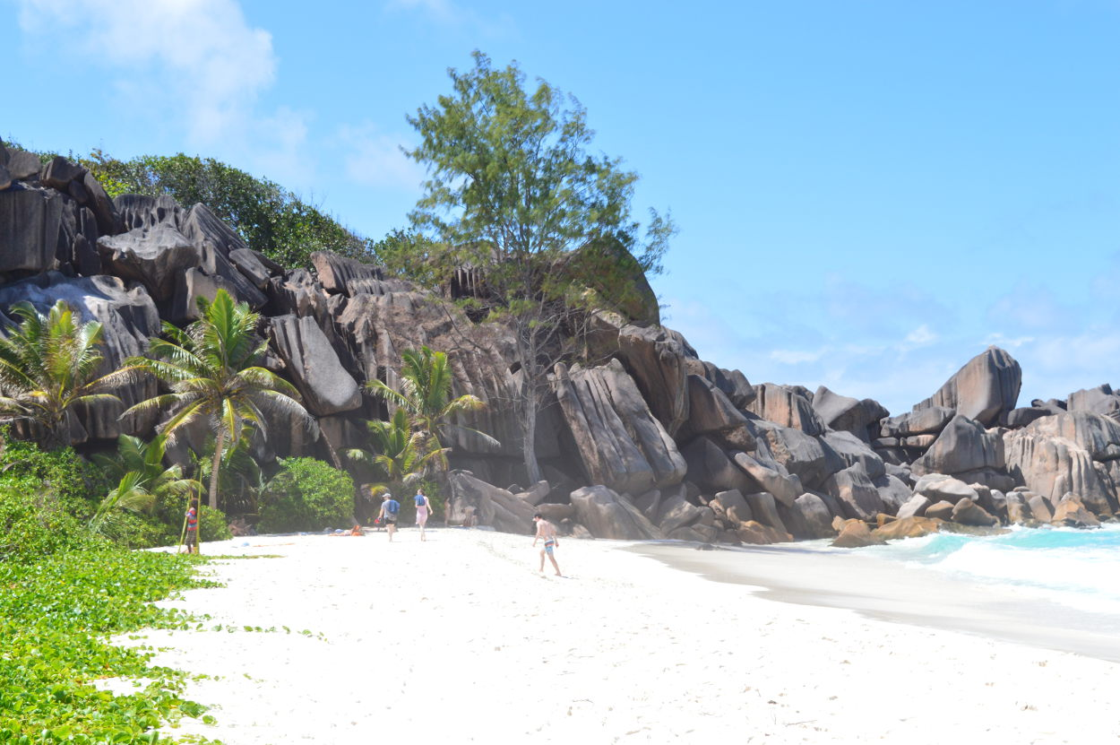 Where the path to Petite Anse begins