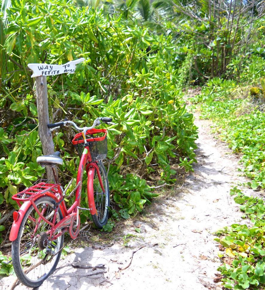 Path to Petite Anse
